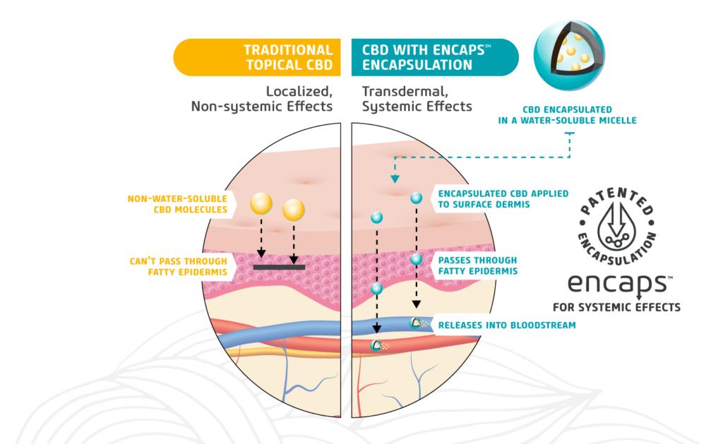 Patented Encapsulation vs Traditional CDB Explanation Graphic